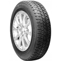 WQ-101 175/70r13 [82]S